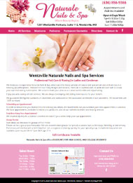 Wentzville business website